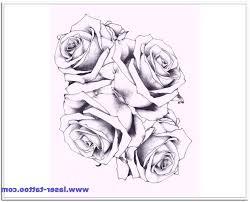 roses and vines designs vine design