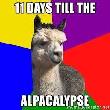 11 days till the alpacalypse arashian alpaca meme generator