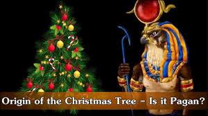 christmas trees u0026 jeremiah 10 u2013 little guy in the eye
