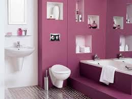 paint color ideas for bathroom colorful bathroom ideas monstermathclub com