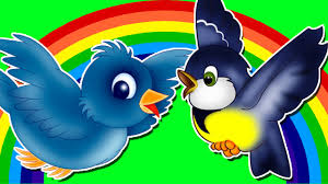 colors song birds nursery rhymes and color songs for kids