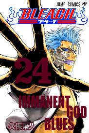 bleach filler episode guide bleach manga vol 24 immanent god blues bleach covers