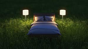 pflanzen für schlafzimmer 6 ideale pflanzen fürs schlafzimmer