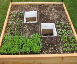 basic tips on square foot gardening advantages and techniques of