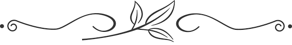 clipart divider leaves lines thanksgiving