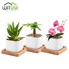 compare prices on mini white ceramic plant pots online shopping