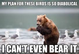 Animal Pun Meme - bear puns punpedia