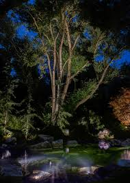 Landscape Tree Lights Tree Lighting Ideas And Pictures