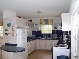 white wooden kitchen cabinet and blue tile backsplash added by