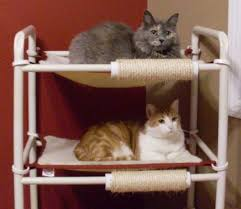 elevated cat beds cat cages and more rover company