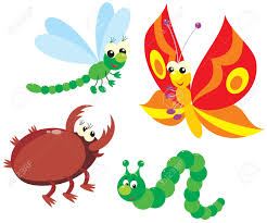 dragonfly butterfly clipart explore pictures