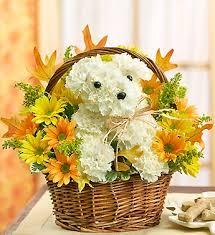 dog flower arrangement hw0 488954 jpg