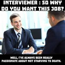Job Search Meme - 42 memes for people who know how much it sucks to look for a job