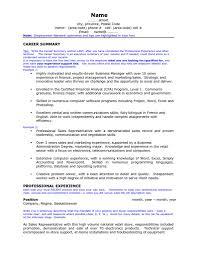 Sales Representative Job Description Resume by Career Overview Resume Resume For Your Job Application