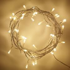 Fairy Lights Indoor by Indoor Fairy Lights With 40 Warm White Leds On Clear Cable By