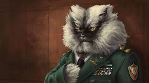 Colonel Meow Memes - colonel meow wallpaper finally found the time to paint something