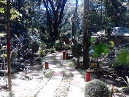 List Of Botanical Gardens The List Of Botanical Species Found Here Picture Of La Union