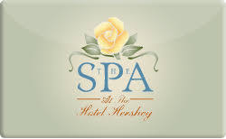 spa gift cards buy the chocolate spa gift cards raise
