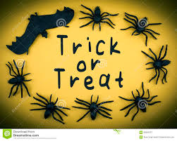 halloween nature background spider trick or treat background stock photos image 16045933
