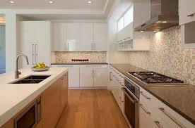 Inexpensive Modern Kitchen Cabinets Amazing Affordable Modern Kitchen Cabinets With Affordable Modern