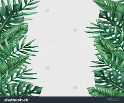 palm tree christmas cards sale best images collections hd for