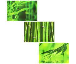 Stickers Salle De Bain Bambou by Lot 3 Magnet Frigo Stickers Zen Bambou Nature Vert 4902