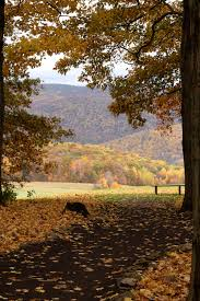 a fall adventure to kentuck knob by frank lloyd wright with the
