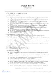 Admin Resume Examples by Informatica Administration Sample Resume 20 Obiee Sample Resumes