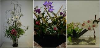Plant Delivery Living Floral And Blooming Program Ambius Us