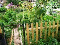 fairbanks ranch edible garden landscape san diego by jackie