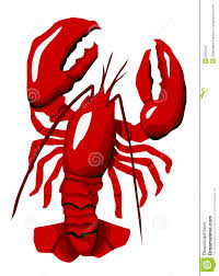 red lobster royalty free stock photo image 2355545