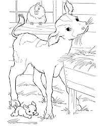 free calf farm animal coloring pages animal coloring pages of