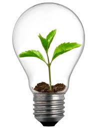 how do we grow new ideas creative thinking
