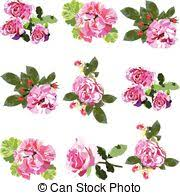 blossom pink and white rose flowers frame square frame of
