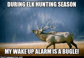 Alarm Meme - during elk hunting season my wake up alarm is a bugle hunting