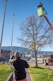 restring christmas tree lights stringing christmas lights osoyoos times osoyoos times