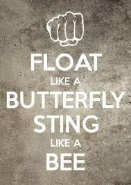 float like a butterfly sting like a bee wallpaper gallery