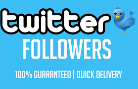 buy followers add 1000 hq and prof pic retweets or favorites for 2