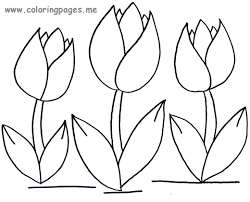 download tulip coloring pages bestcameronhighlandsapartment
