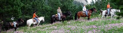 South Dakota How Far Can A Horse Travel In A Day images Rockin 39 r trail rides inc jpg