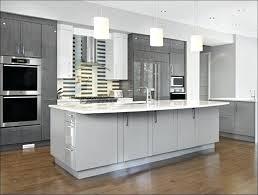 Professionally Painting Kitchen Cabinets Professionally Painting Kitchen Cabinets Ways To Refinish Kitchen