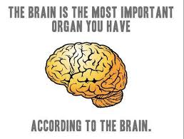 Neuroscience Meme - scientists pick the brain of comedians to learn about the