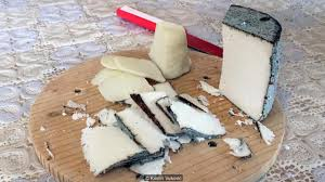 bbc travel a cheese made from u2026 donkey milk