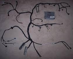 lsx wiring harness wiring ls ls ls ls lt ls ls lsx harness ls