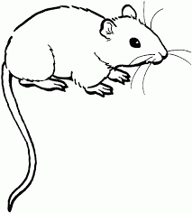 kids n fun 23 coloring pages of mice inside mouse color page