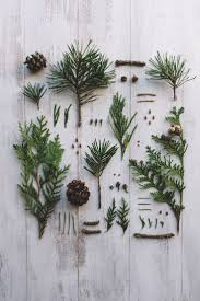 Pom Trees Best 20 Pine Ideas On Pinterest Etsy Jewelry Pine Cone And