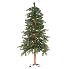 Decorative Pine Trees Types Of Christmas Trees Pictures Christmas Lights Decoration