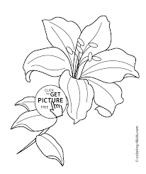 flower coloring pages for kids printable free