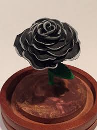 black roses for sale beauty and the beast black with silver
