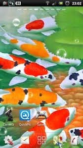 koi live wallpaper version apk free koi live wallpaper apk free personalization app for